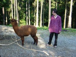 Me and lama - ja a lama by overdrive