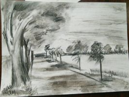 landscape. nature by MLSNight
