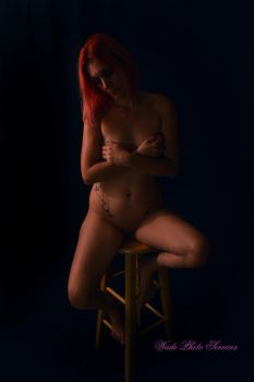 Nude Barstool3 by wadesphotos