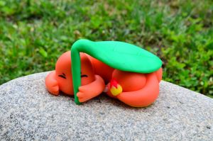 Charmander Clay Video Tutorial :D by CraftDragons