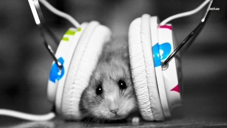 4281-dubstep-hamster-1366x768-music-wallpaper by andon29