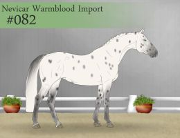 Import 82 by SweetStreamStables