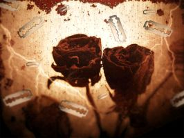 for love and falling by decio
