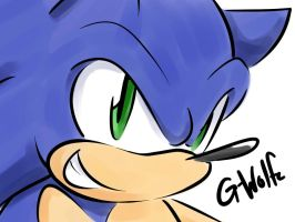 Sonic Quickie by G-Wolfe