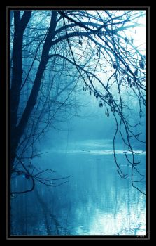 Blue Fog by InLightImagery