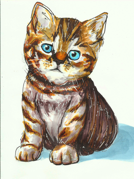 Commission Kitty