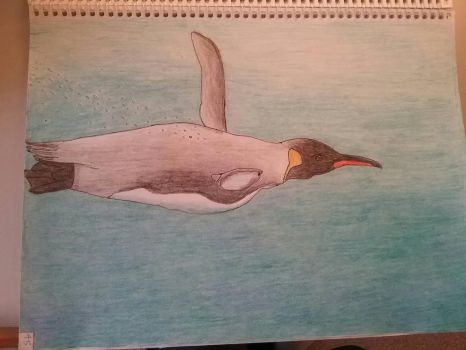 Art Class Assignment: Diving King Penguin by Erick-the-Druid