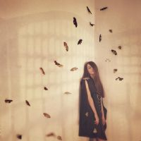 butterfly effect by oprisco