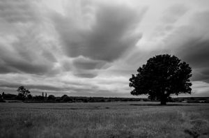 Solitree clouds by Mincingyoda