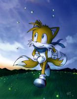 Tails' Last Summer by Windhover07
