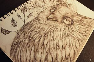 forgotten sketchbook owl by YourCottonmouth