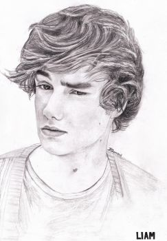 Liam Payne by Bree-Style