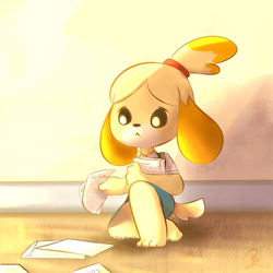 The Year of Isabelle by Pazlin