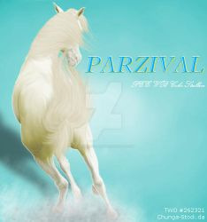 HEE Parzival by TheWildOne-Arts
