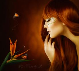 Fascinated  by beauty by Nataly1st