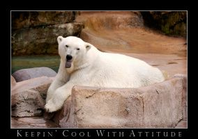 Keepin' Cool with Attitude by jazzkidd