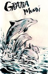 Dolphins by MIRRORMASTER