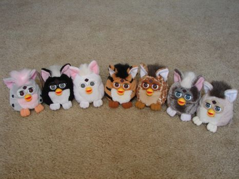 My Furby Collection: Furby Buddies - Update 1 by sbfan101909