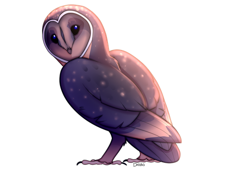 Black Barn Owl by Rawri-Tea