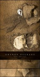Package - Grunge - 1 by resurgere