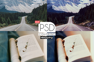 PSD Coloring 014 by vesaspring