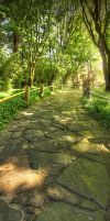 Stepping Stones by wreck-photography
