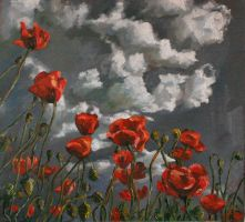 Poppies by MiracleAyano