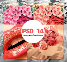 PSD 14 by AwesoOmeDDLovathoO