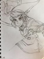 Twilight princess Link by JustUsWaffles