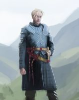 Training - Quick Study : Brienne by EvilPNMI