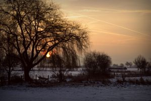 Cold Morning III by angelbluemellodia