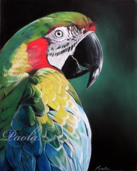 Macaw pastel painting by skippypoof