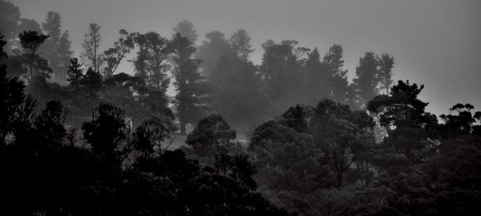 Blue Mountains, Nsw, Australia by TheUndyingLands