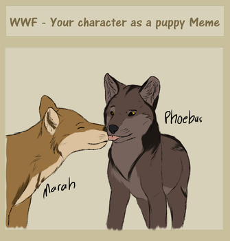 [WWF] Phoebus Puppy Meme by Nitty-Kitty