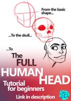 Human Head for beginners Video tutorial by javicandraw