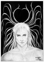 Thranduil / Lee Pace. diptych by hwaetmere