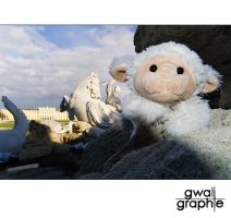 on tour by Gwali