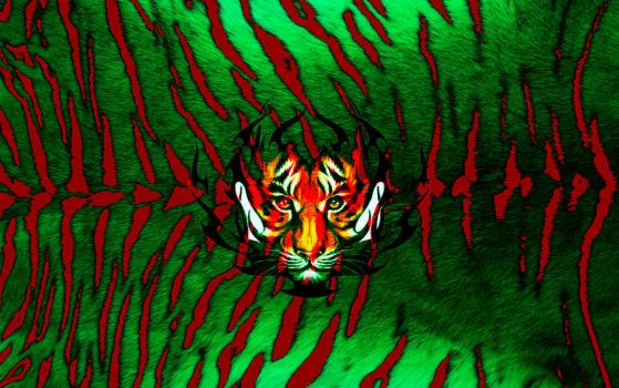 Tigers from Bangladesh by nafSadh