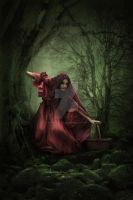 Red Ridinghood by babsartcreations