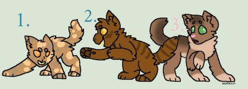 FireXSpotted Kits Adoptables [OPEN] by UNDEAD-FREAK2034