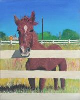 Equine One by insubstansiate