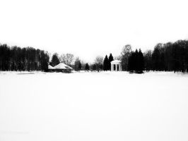 clean snow by varion