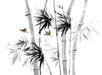 bamboo and birds by kenglye