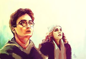 Harry And Hermione by rflaum
