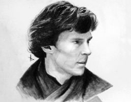 Consulting Detective by LiviaWeasley