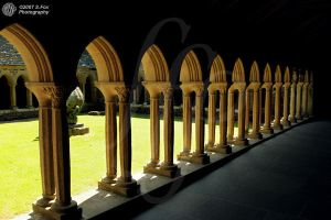 Cloisters by FoxDesigns