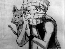 Natsu and Happy by Akcua