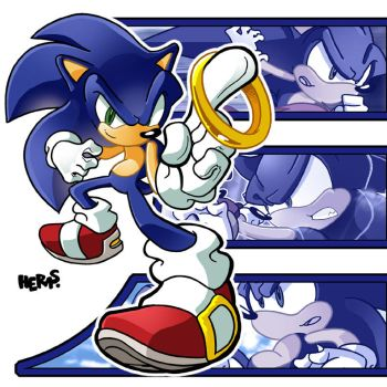 Sonic the Hedgehog by herms85