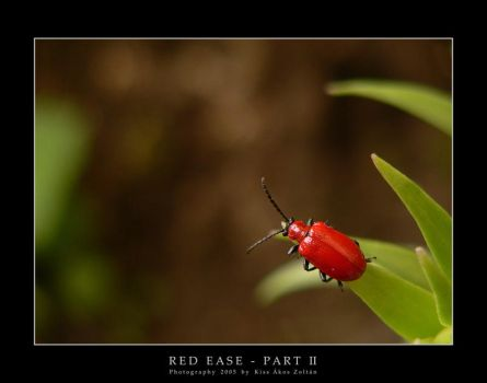 Red ease - part II by DimensionSeven