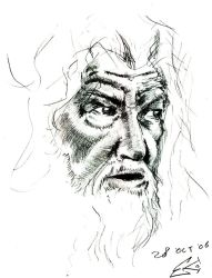 McKellen Face Sketch by ekoyagami